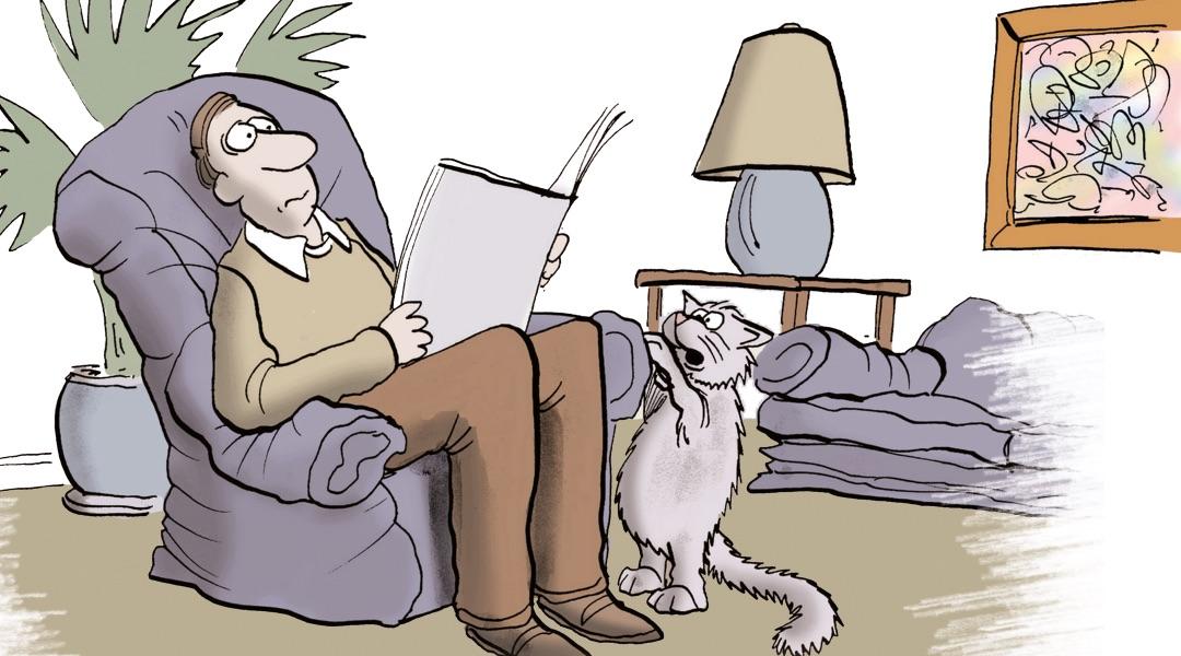 Komşu Kedi Eti Yedi