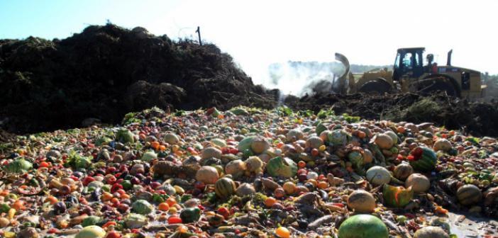 Dünya 1 Milyar Ton Gıdayı İsraf Etti