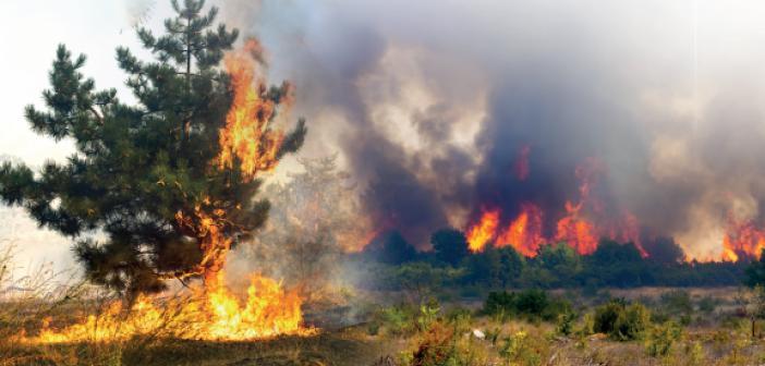 Nefs-i Emmare Yangınları